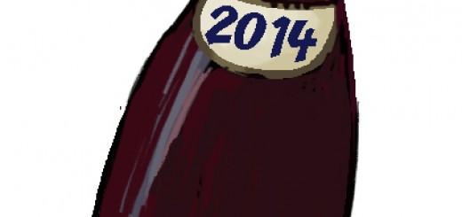 bouteille vin d jeu 2014