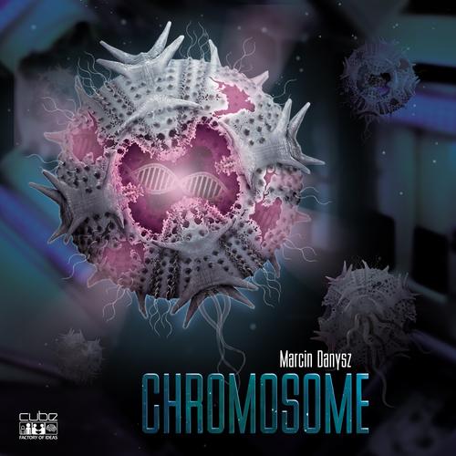 1380-chromosome-1